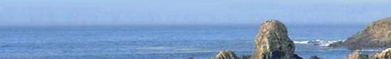 oceanbreeze-b1.jpg