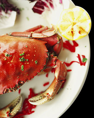 lg_crab.jpg
