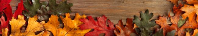 fall_foot.jpg