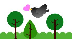 Bird2-01.jpg