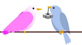 Bird3-01.jpg