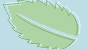 leaves_placeholder.jpg